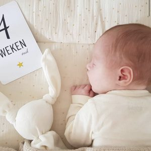 Mijlpaalkaarten baby